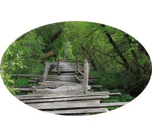 woodenfootbridge